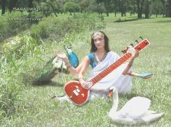 Natural Deity Series - Saraswati Art Photo Blog