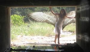Urban Angels Series - Dawn IV