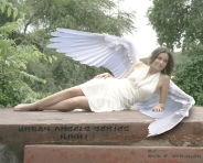 Urban Angels Series - Nikki