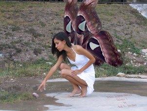 Urban Angels Series - Selena